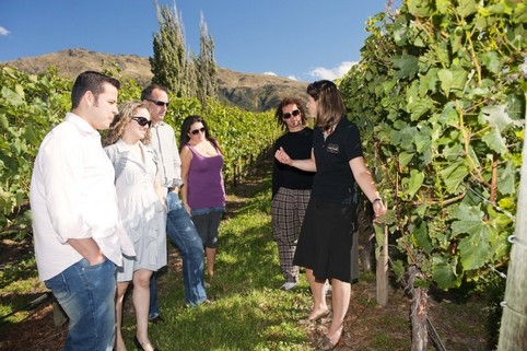 Wine Tours Queenstown